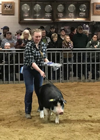Animal Technology students show their worth