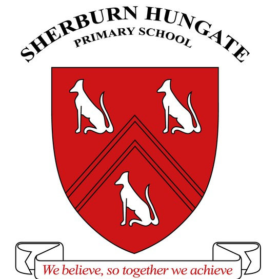 Sherburn Hungate School profile pic