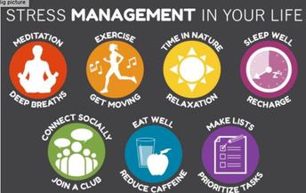 Wachusett Wellness Newsletter