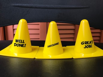 Cones for Excellence Awardees