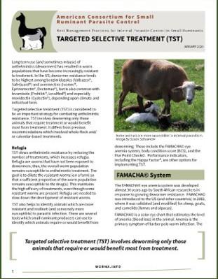 New Fact Sheet on TST
