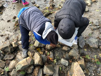 3rd Grade visits Calf Pasture Beach