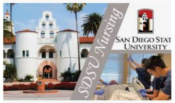 Nursing Career Session: SDSU Student Nursing Association