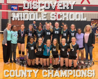 DMS Volleyball Teams Win Championship
