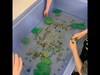 Exploring frog lifecycles in Pathways
