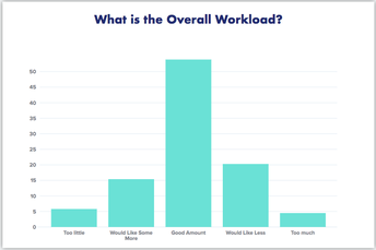 What is the Overall Workload?