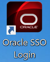 REMOTE ACCESS TO ORACLE
