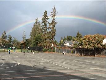 Adelante Selby Rainbow!!