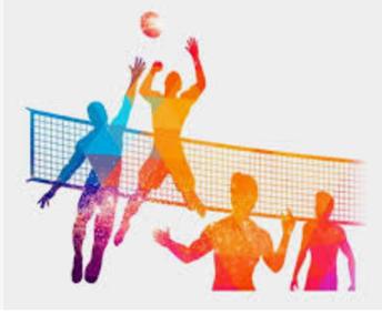 2019-2020 SVS JV Volleyball Roster