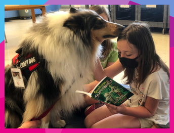 Reading a Good Book to a Therapy Dog