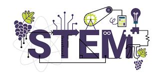 STEM NEWS