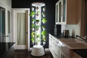A Look At Down-To-Earth Plans Of Hydroponic Systems For Weed