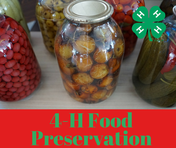 Start Food Preservation Exhibits NOW