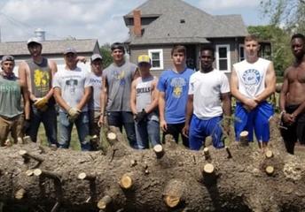 Teamwork and Tree-work