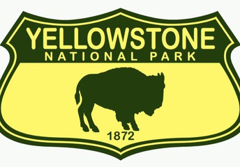Ready to explore Yellowstone? You don't have to wait for your trip out here. You can start exploring now by virtually touring some of the main attractions around the park. Included with each tour is additional information about visiting in person.