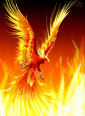 Have you been to Phoenix Rising?  You don't want to miss it!