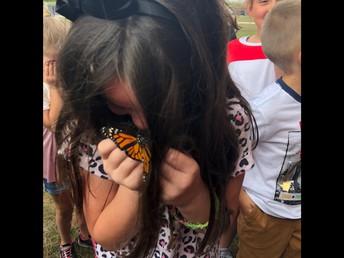 Mrs. Steyer's 2nd grade released monarch butterflies