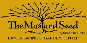 Mustard Seed Donation