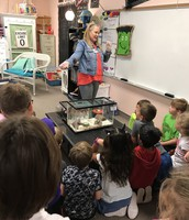 Second Graders & Spiders!