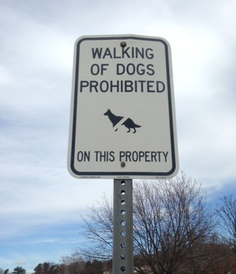 Dogs on School Property