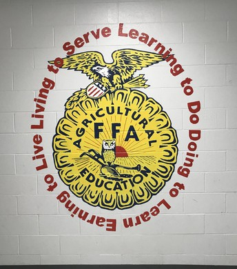 FFA Makes a Positive Difference