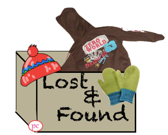 Lost and Found at Lyon and Pleasant Ridge