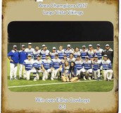 Baseball team wins Area!