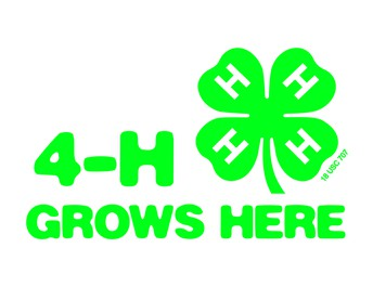 4-H STEAM Club at EIS to Have New Format –With New Opportunities!