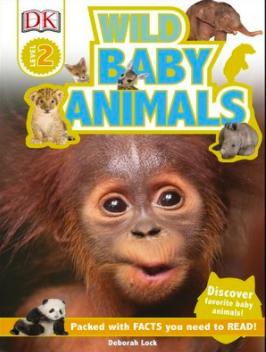Wild Baby Animals by Deborah Lock
