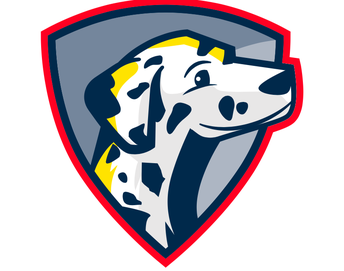 Stay connected to the Dalmatian Nation!