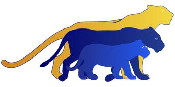 PVA Panthers Video