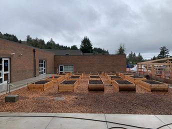 New Planter Boxes