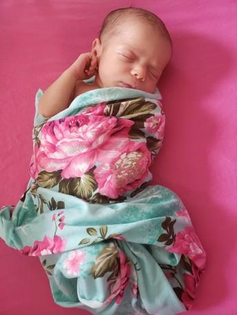 Meet Ms. Traversi's Baby Girl!