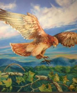Skyview Upper Elementary School