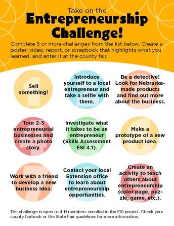 Entrepreneurship Challenge