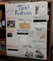 Ms. Jones 2nd Grade Class Text Features Anchor Chart