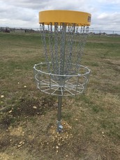 Disc Golf is Here!