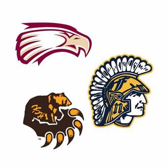eagles, bruins, spartans logos