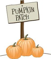 Hall's Pumpkin Patch Field Trip