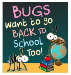 Head Lice and Bed Bugs
