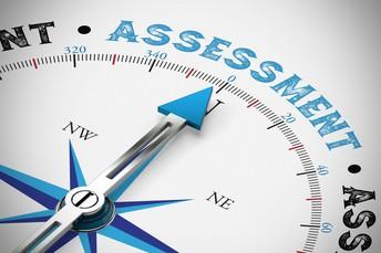 5. Assessment FYI