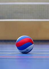 LR Staff Volleyball Game