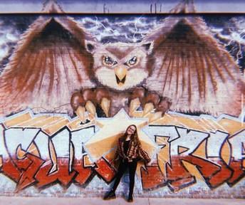 Lauren Mitchell's Amazing OwlFeed Legacy