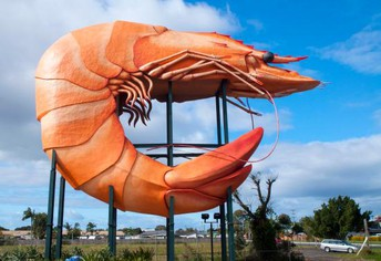 the giant prawn