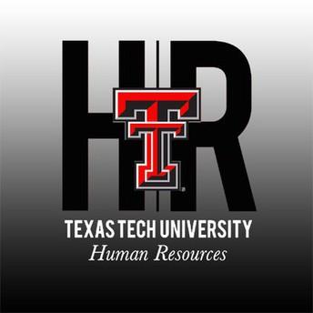 Talent Development   Human Resources