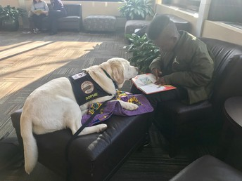 Reading to Sophie, the Mercy Therapy Dog