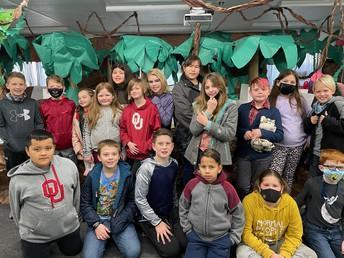 Mrs. Schmitz's Rainforest
