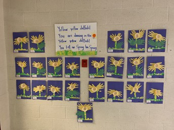 Yellow Yellow Daffodils