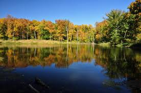 Field Trip - Wilson Lake - May 7