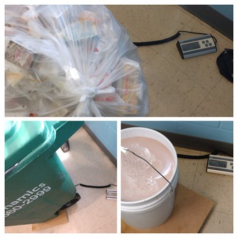 Weighing our Food Waste